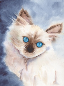 """Annabelle"" (c) Melanie Pruitt 2012"